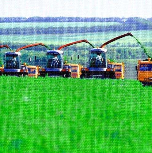 Экономика агропромышленного